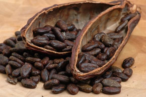 kakao-boby