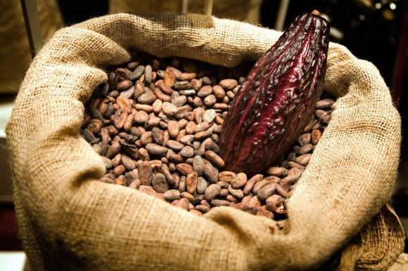 polza-kakao-bobov