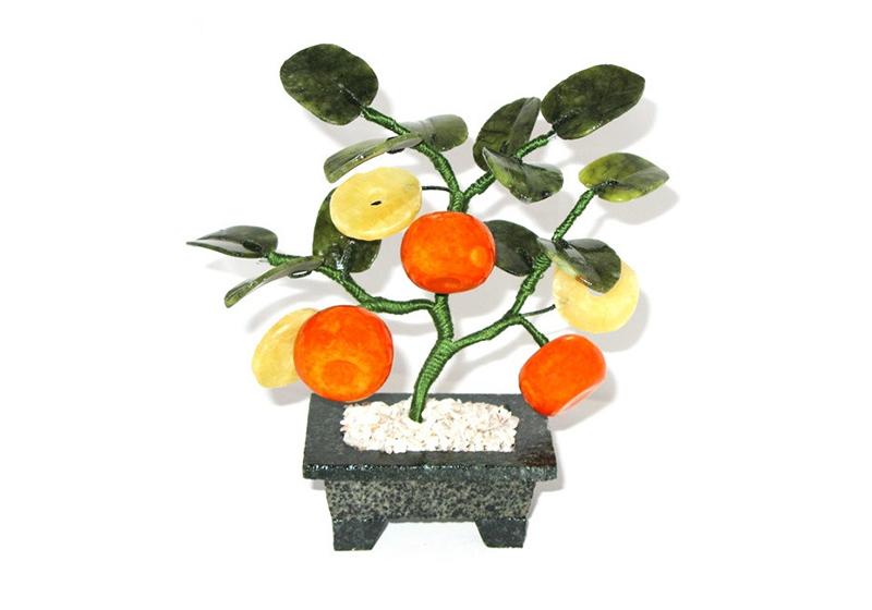 Фото Мандариновое дерево 3 плода 3 монеты